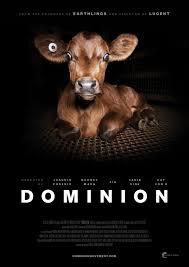 DOMINION CLASIFICACIÓN B